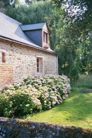 Moulin d'Hys: Flowers