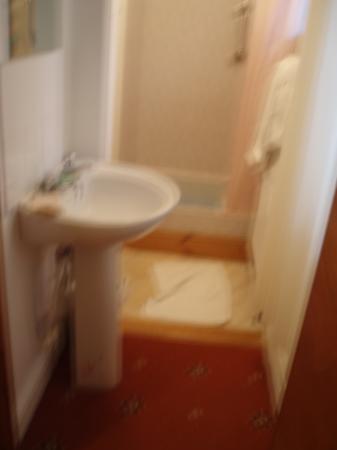 The Rosemundy House Hotel: The luxury bathroom(!)