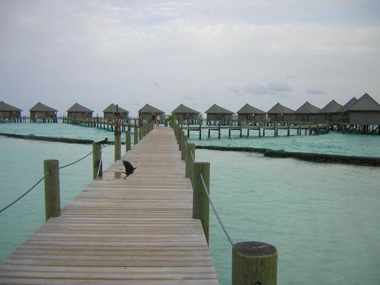 Komandoo Maldives Island Resort: Walkway to Waterbungalow