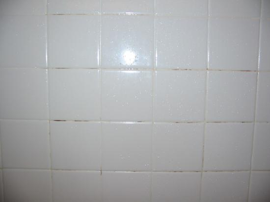 BEST WESTERN Hospitality Hotel: yucky tile mildew in room #252