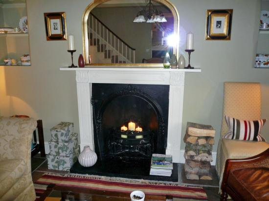 The Drawing Room: Fireplace in June