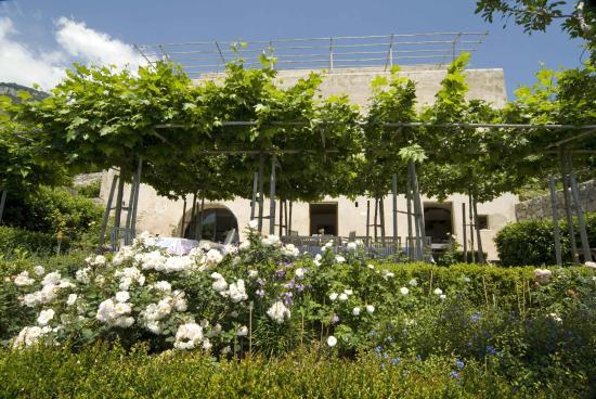 Casa Privata : in full blossom