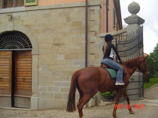 Il Borro Relais & Chateaux: They have beautiful horses. It's an enjoyable ride.