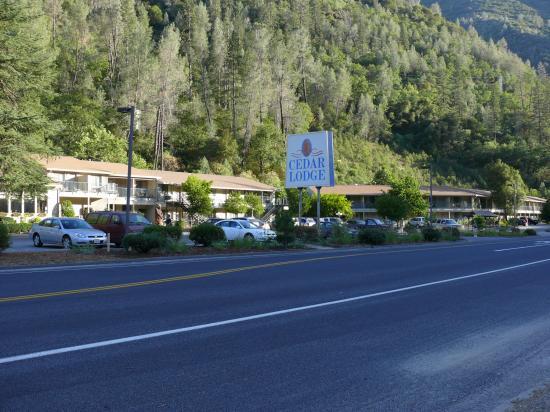 Yosemite Cedar Lodge: Vue depuis l'autre côté de la route
