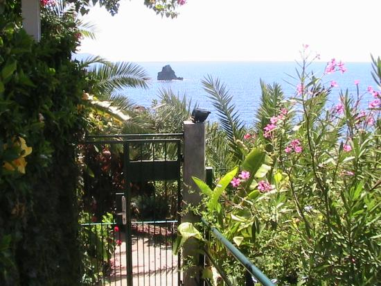 Madeira Regency Cliff: View from Hotel walkway