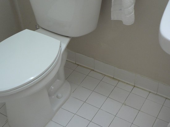 Quality Inn & Suites:                   Ramada Inn Bathroom Toilet & Wall