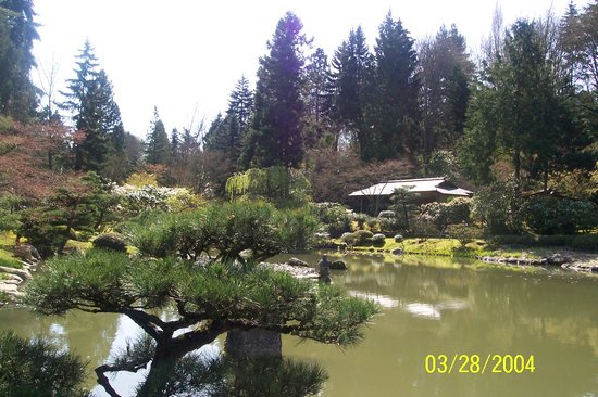 Seattle, Etat de Washington : Japanese Gardens