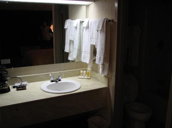 كواليتي إن مونت إيري: Bathroom