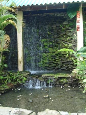 Occidental Caribbean Village Playa Dorada : waterfall by the main desk