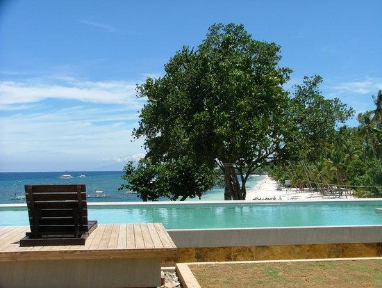 Amorita Resort: Infinity Pool view