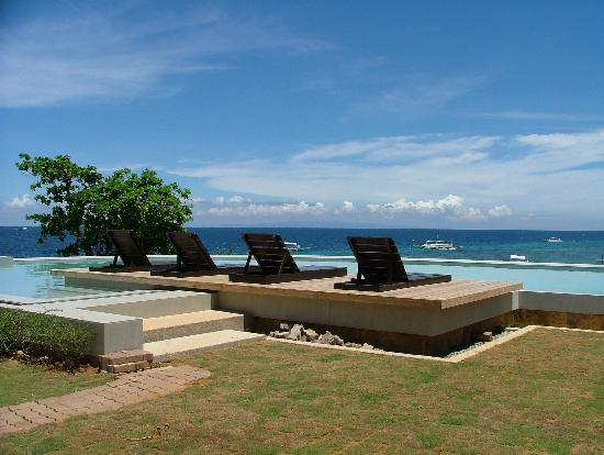 Amorita Resort: Infinity Pool view