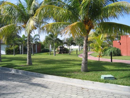 Las Hojas Resort & Club: Grounds around bungalows