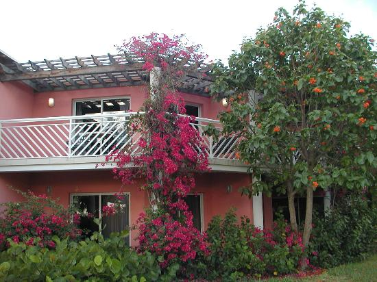 Beaches Turks & Caicos Resort Villages & Spa: Picture Perfect Place