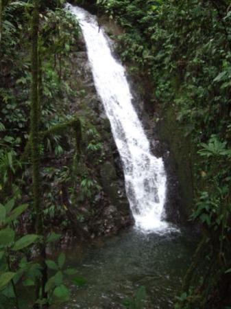 Hosteria el encanto: waterfall