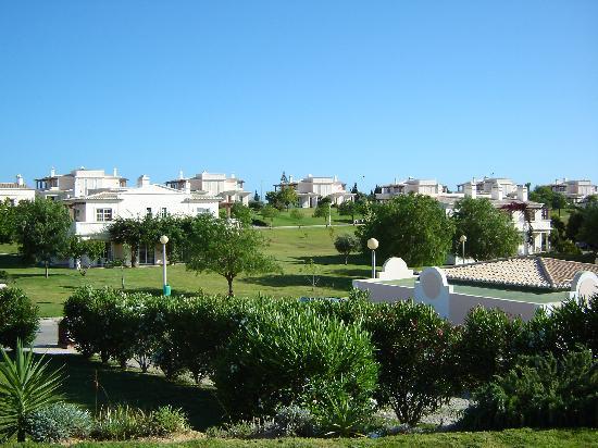 Colina da Lapa: A view of the site 1