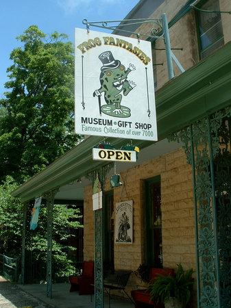 Frog Fantasies Museum