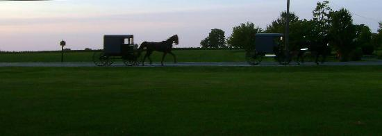 2 horse & buggies passing in front of Bird-in-Hand Family Inn