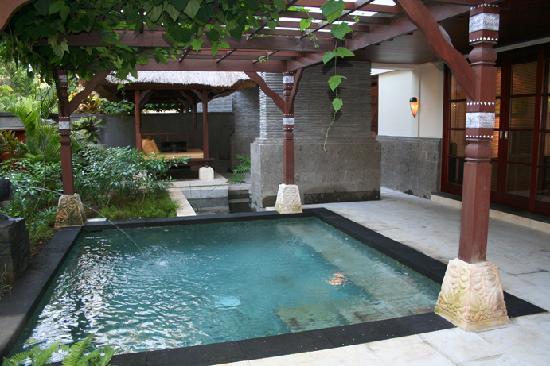 Novotel Bali Nusa Dua Hotel & Residences: Private pool