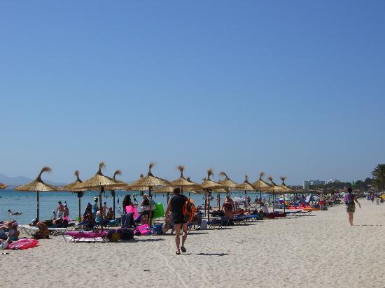 Grupotel Amapola: Muro beach (5 mins wallk away)