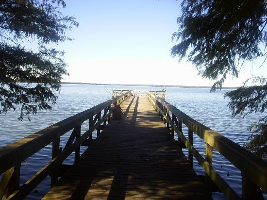 Reelfoot Lake State Park: Short boardwalk/fishing area