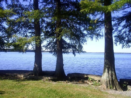 Reelfoot Lake State Park: Lake view