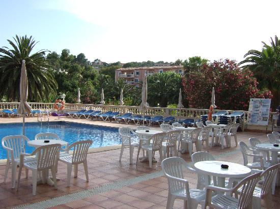 FERGUS Bermudas : terrasse et piscine de l'hotel
