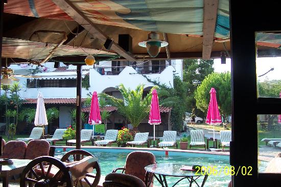 Oasis: pool 2