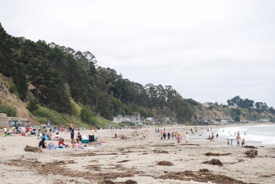 New Brighton State Beach In Capitola Ca