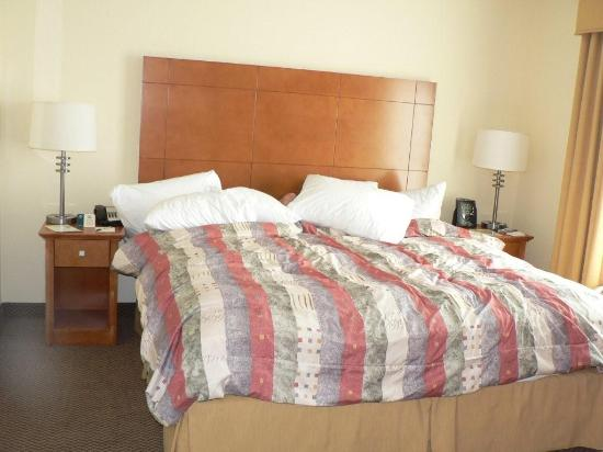 Homewood Suites by Hilton Bethlehem Airport : Bedroom