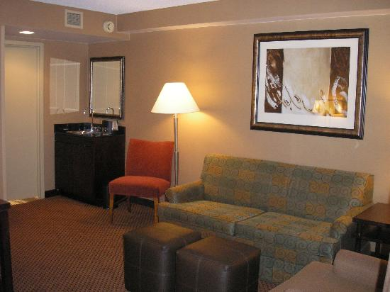 Embassy Suites by Hilton Chicago - Lombard/Oak Brook: Suite sitting area