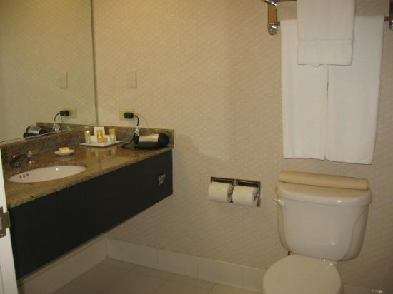 Hyatt Rosemont: bathroom