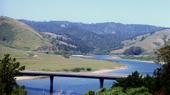 Sonoma County, Californie : View towards Highway 116 near Jenner
