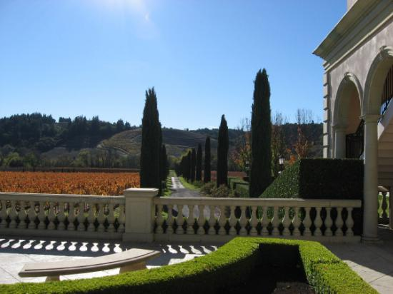 Distrito de Sonoma, CA: Ferrari Carrano Winery in Dry Creek Valley
