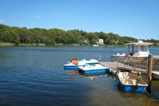 CapeWind Waterfront Resort: paddleboats