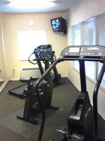 Fairfield Inn & Suites Tampa North : fitness room