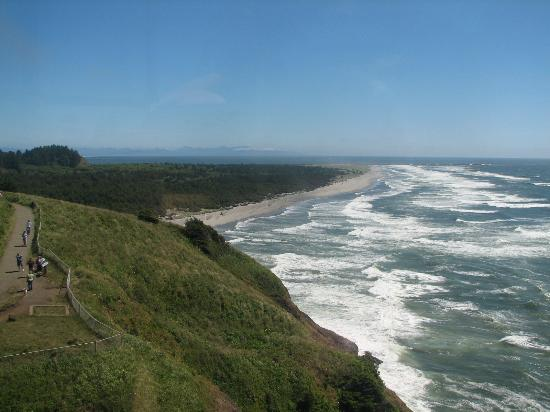 View Of Cape Disappointment Campground To Left In Trees