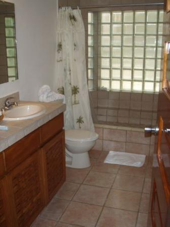 Mayan Princess Beach & Dive Resort: Great Shower...Think we may be doing some remodeling at home to match this!