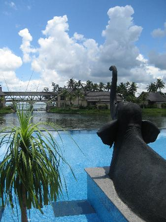 The Zuri Kumarakom: View from a lounge chair at pool