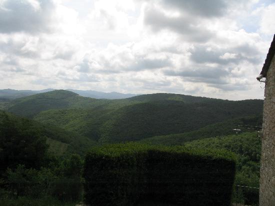 Il Borgo di Vescine - Relais del Chianti: The View
