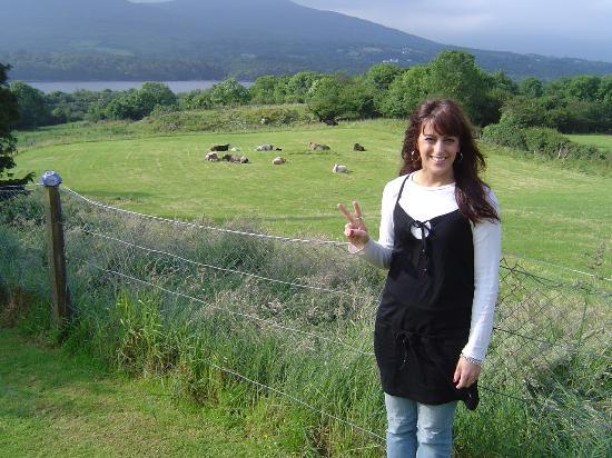 Tara Farm: Now that's a backyard folks!