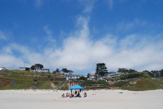 A Sunny Day at Manresa State Beach