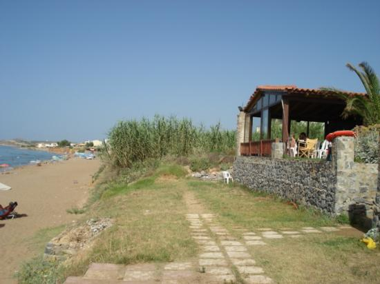 Krini Beach Hotel: bar looks out to the beach