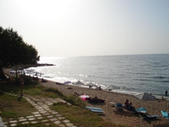 Krini Beach Hotel: beach