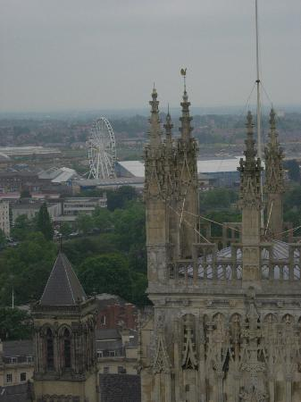 The Limes : View from top of York Minister. Hundered of stairs to walk up....