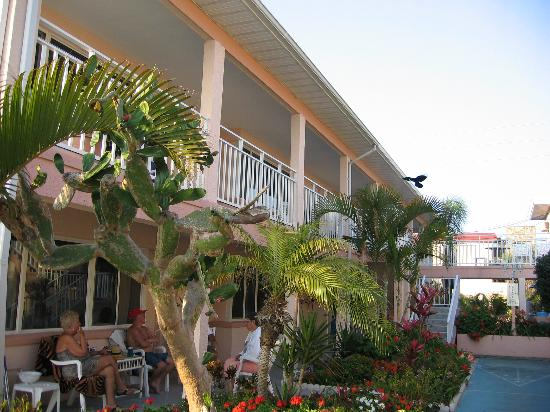 Suncoast Motel: outside front of rooms
