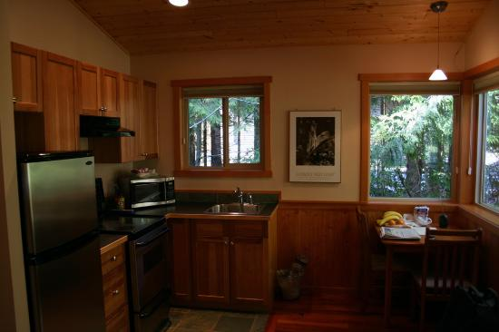 Evergreen Forest Cabins: the kitchen