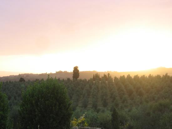Torre di Ponzano - Chianti area - Tuscany -: sunset view 2