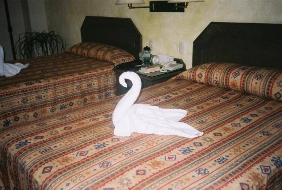 Los Itzaes Hotel : Cool towel animals, we had a different one everyday