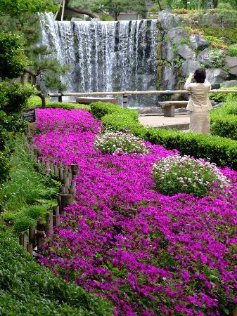 Hotel New Otani Japanese Garden : Hotel New Otani Garden D