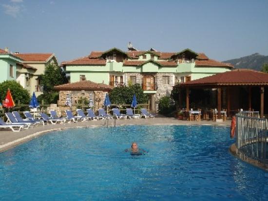 Şahin Villa Aparts: Pool + Apartments